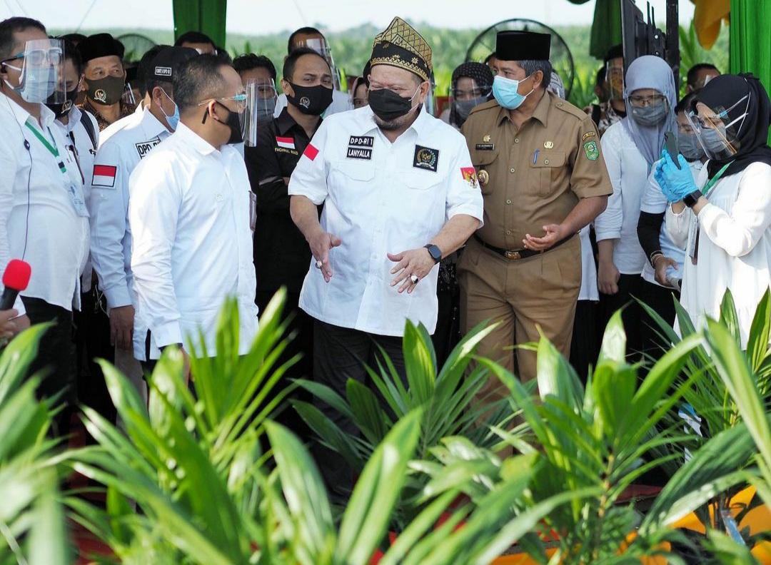 Ketua DPD RI AA LaNyalla Mattalitti saat meninjau program pertanian di Kabupaten Barru, Suawesi Selatan, baru-baru ini. [Foto: Dok. DPD RI]